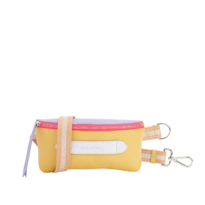 Coachella Multicolor Belt Bag